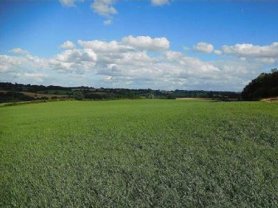 Property for sale, Bromyard