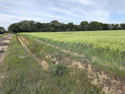Land at Asmall House Farm, Asmall Lane, Scarisbrick, Ormskirk L40