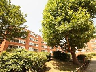 Edgecot Grove, Seven Sisters N15