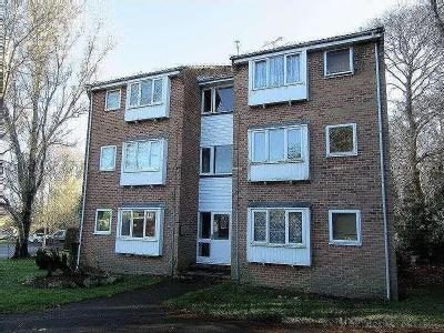 Holly Drive, Waterlooville, Po7