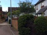 Greenside, Rotherham S61, United Kingdom