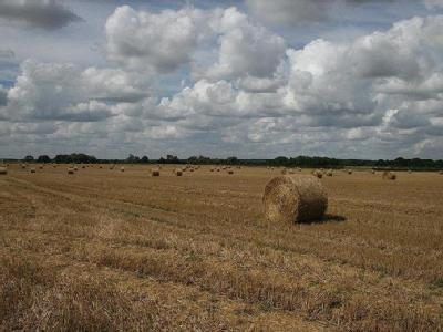 Land At Stickford - Lot 4, Stickford, Lincolnshire, PE22