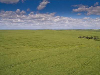 Lingholm Farms - Lot 3, Land At Buckton, Bridlington, East Yorkshire, YO15