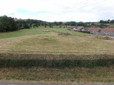 3.93 Hectares (9.71 Acres), Peterchurch, Hereford