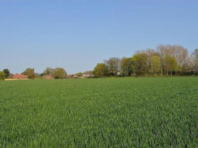 Property for sale, Eastry, CT13