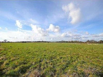 Land Off Pitmore Lane Sway - Freehold