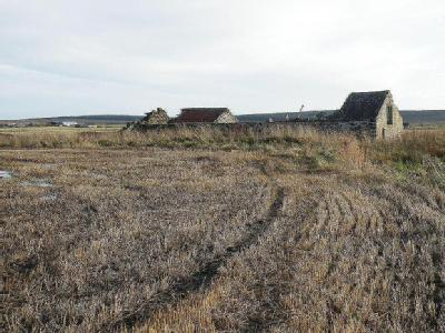 Plot at Lyth, by Wick