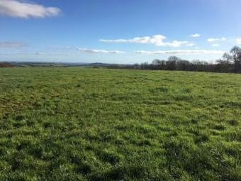 Acres Or Thereabouts At, Llanboidy, Whitland SA34
