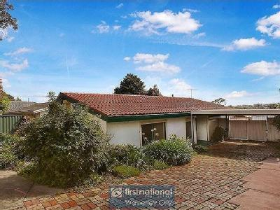 Waverley Road, Glen Waverley - Garden