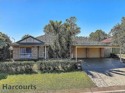 17 Blue Mountain Cres, Warner, QLD, 4500
