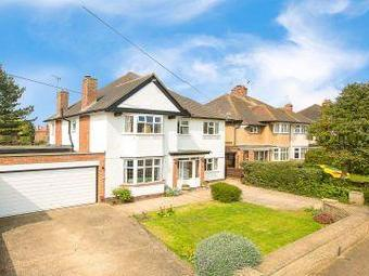 House for sale, Ridgway Road - Garden