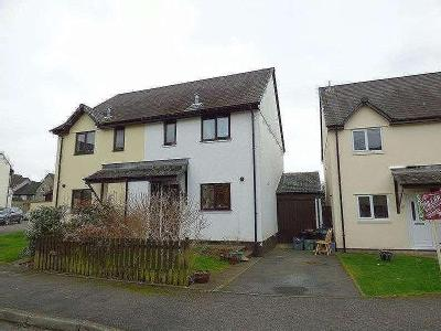 Daucus Close, Tavistock, Pl19