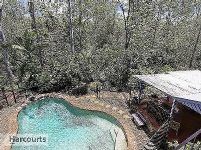 Warringah Grove, Petrie - Garden