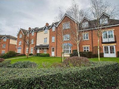 Whitefields Street,  Solihull , B91
